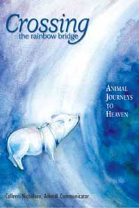 Book: Crossing the Rainbow Bridge: Animal Journey's to Heaven, Nicholson, Colleen